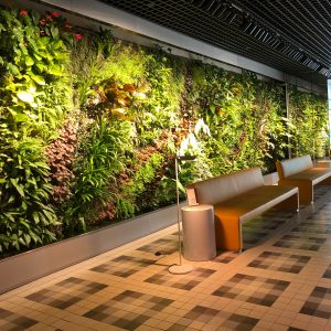 Feature Wall Design - Vertical Garden Feature Wall 01